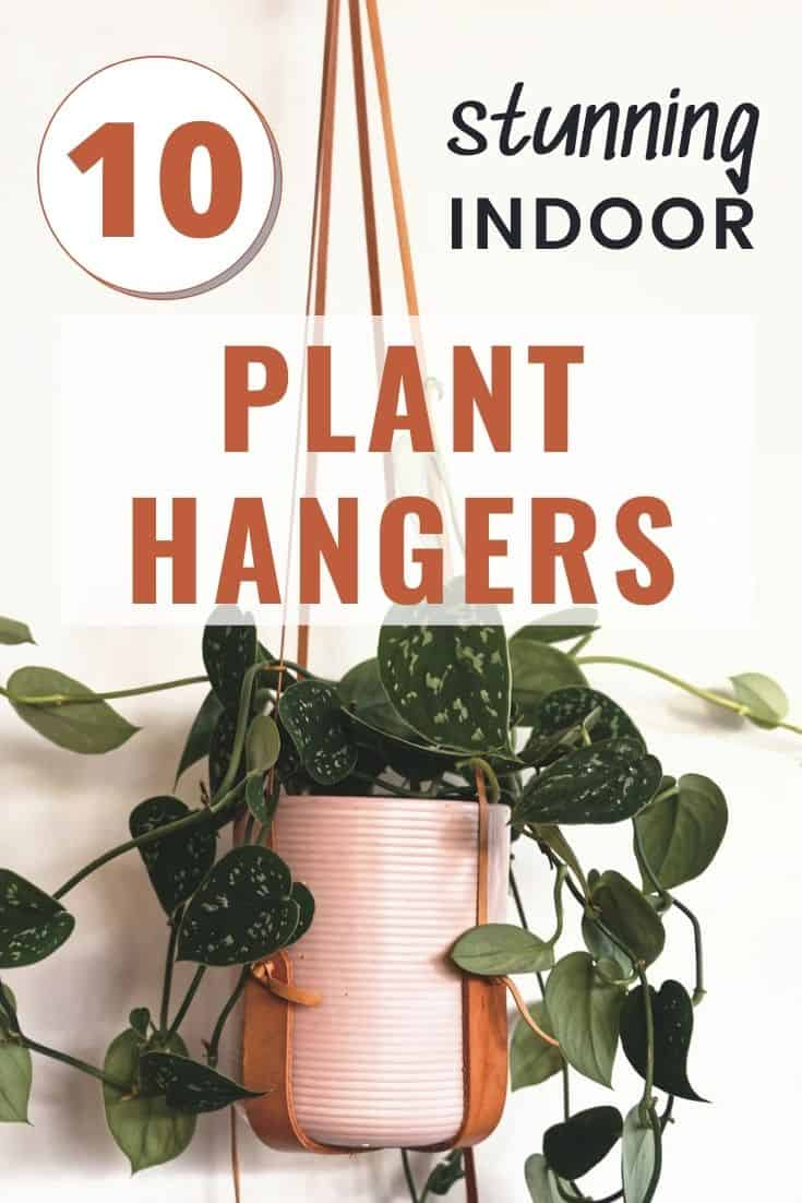 leather indoor plant hangers with pink pots