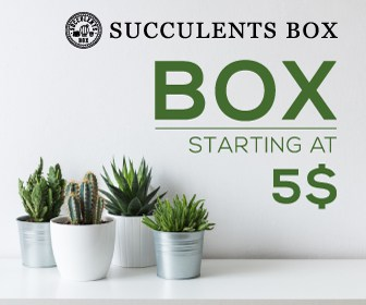 Subscribe to receive succulents mailed to you every month