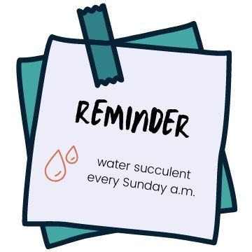 post it note with reminder to water succulents