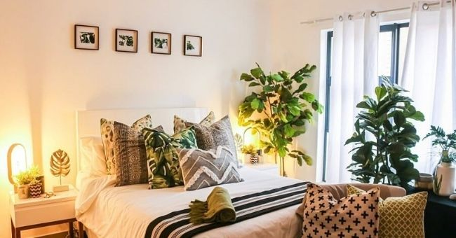create a relaxing bedroom sanctuary with ambient lighting and plants