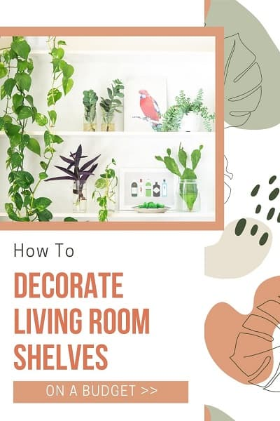 white living room shelving unit decorated with plants and bird pictures