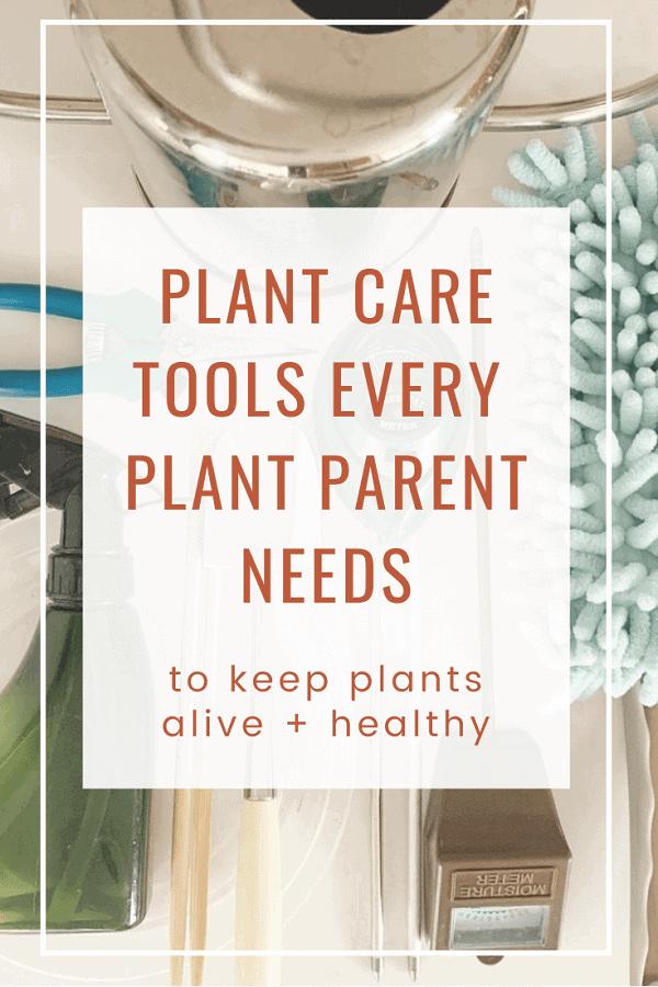 Indoor plant care tools