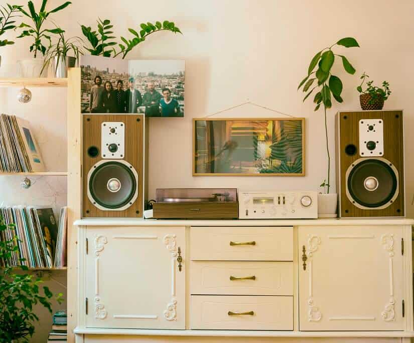 vintage speakers and radio on vintage cabinet surrounded by plants