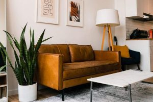 snake plant in white pot on floor beside golden brown couch in earth tone room