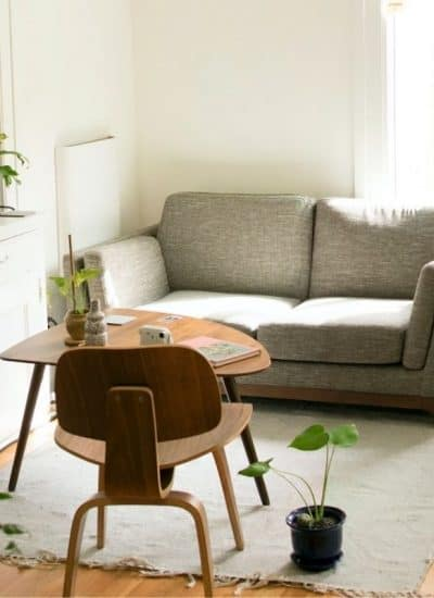 apartment living room decorated with grey sofa, various plants on bookcase and end tables