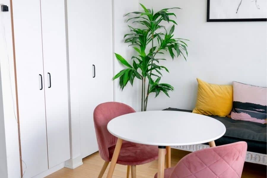 pink velvet chairs around white round dining table with aesthtic plant in corner