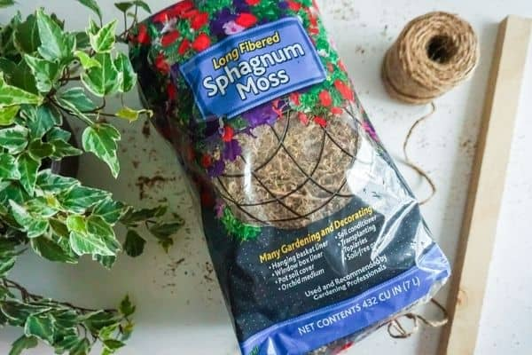 bag of sphagnum moss, wooden stake, twine and climbing vine - DIY Moss Pole Supplies