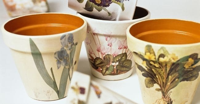terracotta pots hand painted with elegant flowers