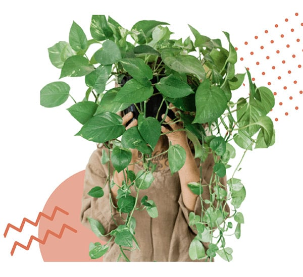Woman holding vine plant in front of her head